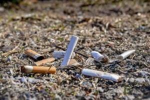Cigarettfimpar är den största plastboven enligt HSR. Foto: Jonas Ekströmer / TT
