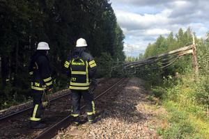 Många träd blåste omkull i Dalarna under fredagseftermiddagen, bland annat över olika vägar. I Gagnefs kommun blåste ett träd omkull över järnvägen mellan Bäsna och Arvslindan. Foto: Privat