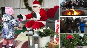 I helgen, den 8-9 december, är det dags för julmarknad i Nynäshamns fiskehamn. Foto: Paulin Sunesson/Nynäshamns stadskärneförening