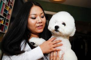 Puh Träskvik gillar att ta hand om hundar. Hennes bichon frisé är välklippt och stylad.