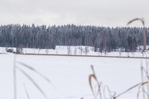 Åsgarn är täckt med is och det är ingen  fara för fotgängare att beträda den. Men  när en traktor häromdagen begav sig ut för att ploga en bana på sjön gick den genom isen och sjönk till botten.