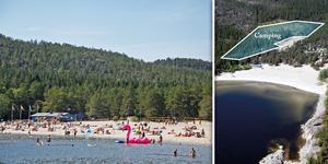 I ett skogsparti precis ovanför stranden är det planerat att campingen ska byggas. Bild: Arkiv/Härnösands kommun (Bilden är ett montage)