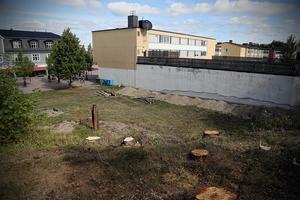 Träden har avverkats och grävningsarbetet för nya hyreshuset på