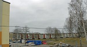 Hallbo har kommit överens med Bengt Asplund om att han ska stärka bygget vid Regnbågen i två månader till att börja med. Timarvodet till konsulten är 1050 kronor.