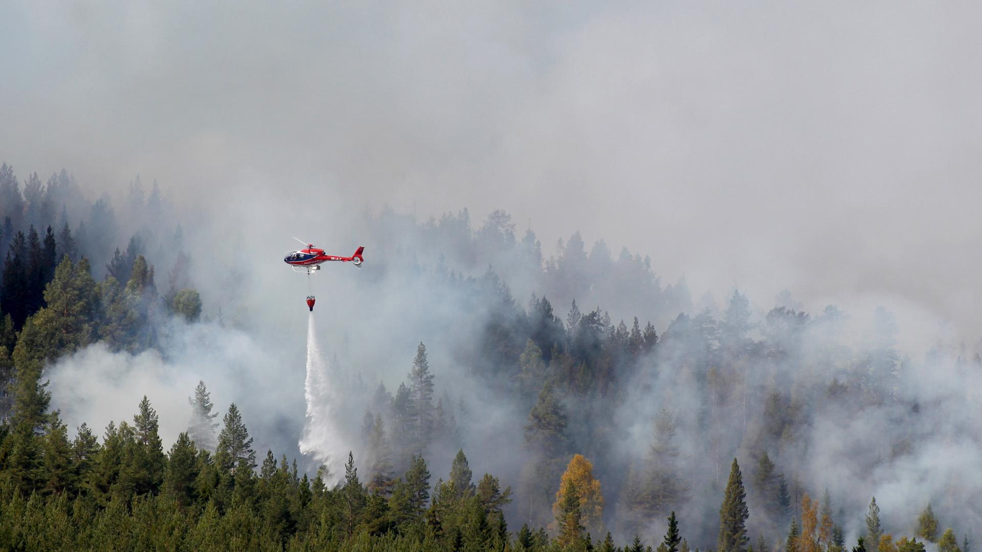 Massevakuering undan skogsbrand