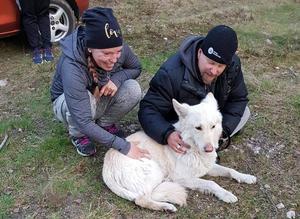 Efter 21 dagar på rymmen kunde Tex fångas in. Ägarna Linda Albinsson och Clas Wallin är glada att få hem sin hund igen.