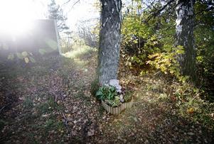 Bakom bullerplanet i Nya Hjärsta hittades Lena Wesströms kropp.