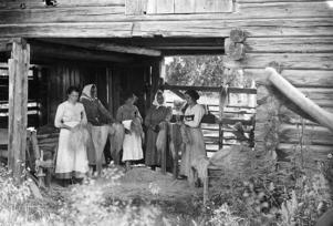 Bilden tagen 1917 i Färnäs där det pågår stekning av lin. Holknekt Martina Eriksson berättade hur hon tilltalades av Färnäs bymiljö i sitt arbete. Foto: Karl Lärka/Mora Bygdearkiv