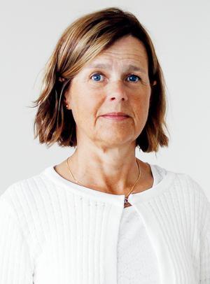 Skolinspektionen har under lång tid påpekat brister på MTH-skolan förklarar Elisabeth Wikén på Skolinspektionen. Foto: Pressbild