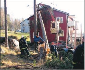 En timmerbil anlitades för att lyfta bort den stora tallen från familjen Perssons hus på Rockebrogatan i Sommen.