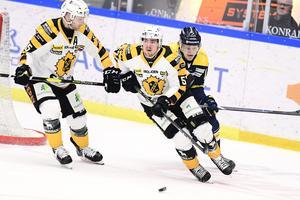 Emil Djuse under en match för Skellefteå mot HV71. Foto: TT