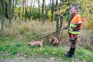 Tätortsnära jakt är mycket annorlunda mot jakt ute i skogen. Dels är djuren vana med att människor pratar och rör sig så att stå still och vara tyst skrämmer dem. Dels används det i jaktsammanhang udda hundar. Anders Wiklund har bland annat jagat med sin brors två chihuahuahundar.
