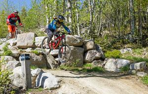 Cykling i Järvsö bergcykelpark eller teater i Harsa? Järvsö lockar turister på olika sätt.