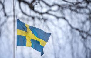 Flaggorna vajade på halv stång på Frösö park när soldater, kollegor och anhöriga höll minnesceremoni för Helena Fjellström.