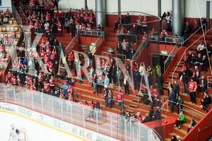 Det var glest på Västra Stå men de som var på plats gjorde vad de kunde för att stötta sitt Timrå IK.
