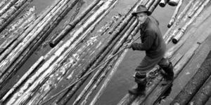 Den här bilden är tagen vid flottningen i Ljusnan 1959. Flytvästar, våtdräkter eller andra säkerhetsattiraljer var inget som fanns för flottarna när de begav sig ut på vattnet för att styra upp timret. Mannen på bilden står på en så kallad sugga, tre timmerstockar som fästs ihop för att flottaren skulle stå stadigare och som användes i lugnt vatten.