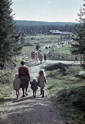 Fäboden Holselen. Foto: Backa Erik Eriksson
