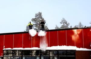 Från Timrå gymnasiums tak skottades mängder med snö under flera veckor.