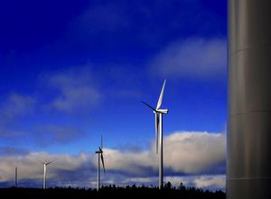 Miljöpolitikerna i Smedjebacken tycker inte det spelar någon roll om fyra vindkraftverk hamnar inom Malingsbo-Klotens naturreservat.