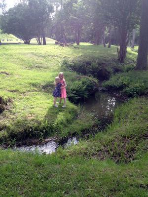 När barnbarnen Moa och Klara kommer till Västerås vill de alltid till Anundshög.