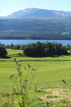 Det finns gott om yta på Västgård som ska klara att ta emot utställare, campinggäster och besökare.