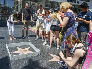 Den drygt 15 centimeter höga muren runt Donald Trumps stjärna på Hollywood Walk of Fame.