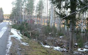 Vid Söderomsjön hade träd fallit över en elledning.