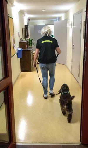 Uppdraget slutfört. Morris följer Lena tillbaka till kontoret.