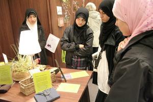 Eleverna från Alsalam-skolan tycker det är intressant att höra om tyger av bambu och bananblad.