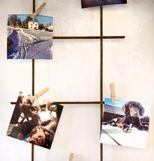 Ett armeringsnät är uppsatt på väggen och med små träklädnypor är familjens guldklimpar uppsatta.