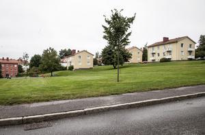 De gula hyreshusen bredvid Kristinaskolan ägs av Härnösandshus. På grönområdet nedför planeras nya bostäder.