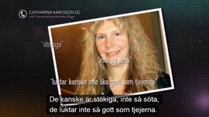 Catharina Karlssons (S) uttalanden i UR:s program