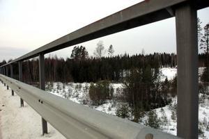 BYGGA. Här på skogsmarken efter järnvägsbron i Älvkarleö bruk vill företagare bygga ett behandlingshem för 25 miljoner kronor. Företagarna räknar med att nyanställa 35 personer.