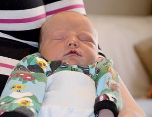 Lillebror föddes den 17 januari men har ännu inte fått något namn.