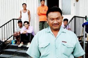 Tongmai Haupanmong är här för åttonde året på rad för att plocka bär.