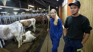 Anna Bergman och Mattias Alfsson är uppvuxna på lantgårdar och studerar nu vid lantbruksgymnasiet på Kvinnerstaskolan.