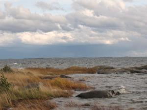 Flyktingar från Åland hade med sig berättelser om den ryska terrorn, skriver Erik Eriksson.