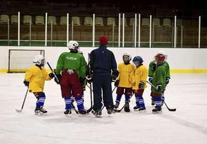 Allt fler yngre förmågor tar sig till Ludvika hockey. Foto: Johan Sörensen