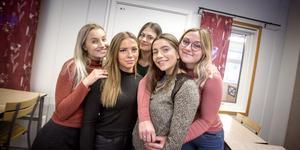 Kompisgänget Emma Hadelöv, Ellen Lott, Linn Bovin, Solene Arnou, och Wilma Ristmägi läser ekonomi, tredje året, på Rönninge gymnasium. De har bildat UF-företaget Affinity tillsammans. Affärsidén är att förbättra integrationen genom workshops för ungdomar.