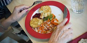 Insändarskribenten tycker att den mat som serveras på äldreboenden i Fagersta inte håller måttet.