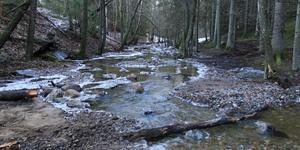 Grus och stenar fördelades ut i ån för att skapa bra livsmiljöer för fiskar och andra djur. Bilden är från mitten av januari och är Sportfiskarnas egen.
