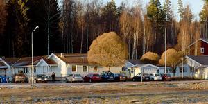 Området i skogen ovanför förskolan i Högsveden visade sig ha högre högvattennivåer än väntat, och kan därmed  komma att falla bort som alternativ för det nya demensboendet.