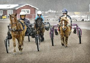 Här kommer tre av Hagmyrens ponnytravekipage stretande i snön på travbanan. Från vänster Johan Olsson/Filur av Björkebo, Thelma Eldh/Dalsgårds Kalypso, och Lisa Gilljam/Talls Pysen.