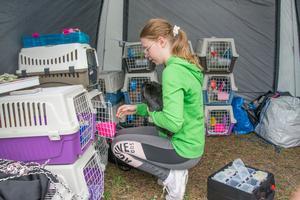Klara Sunding äger en av runt 200 kaniner som var med och tävlade i kaninhoppning i Torvalla i helgen.