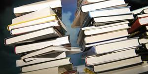 Böckerna på bilden har inget med bedrägeriförsöket i Norberg att göra.