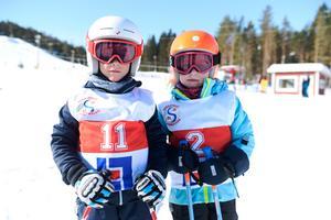 Albin Rautio,7 och Elvira Rautio, 6, som var på plats under familjedagen på Södra berget.