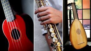 Andra, inte helt vanliga,instrument är ukulele, sopransaxofon och luta.Foto: TT
