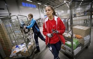 """Elin Tengblad är gruppledare för personalstyrkan i den så kallade """"Norrlandsvågen""""."""