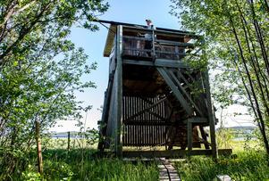 I fågeltornet får du bra utsikt över Idbyfjärden.