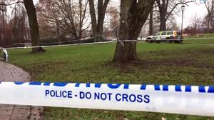 Förra helgen blev en pojke knivdödad i Vasaparken.